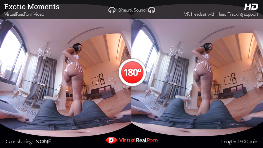 Sexy virtual reality porn movie Exotic Moments from Virtual Real Porn