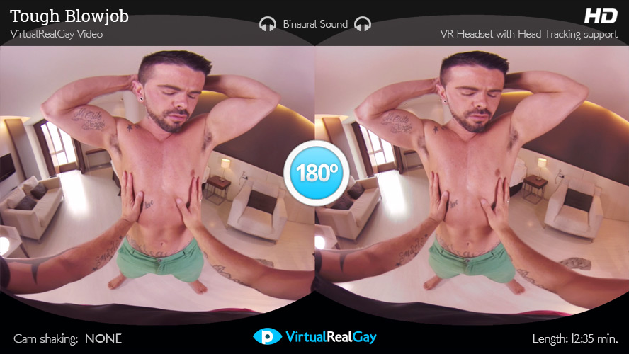 VR Gay Porn The Best Virtual Reality Gay