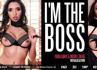 VR BDSM Cover