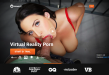 BadoinkVR - The Best VR Porn Studio