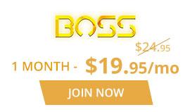 VRCosplayX Boss